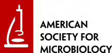 Logo of the American Society for Microbiology